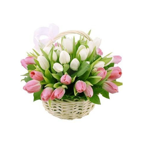 K10  FLOWER BASKET WITH MIXED TULIPS