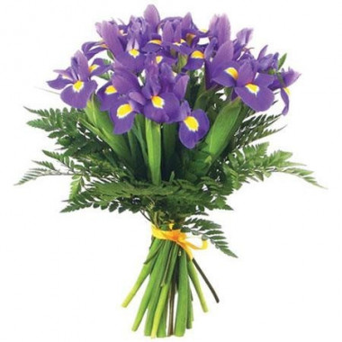 A96 BOUQUET OF IRISES