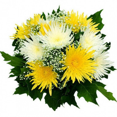 A94 BOUQUET OF CHRYSANTHEMUMS