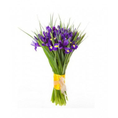 A86 BOUQUET OF IRISES