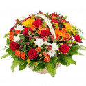 K8 FLOWER BASKET WITH MIXED FLOWERS