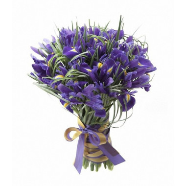 A87 BOUQUET OF IRISES