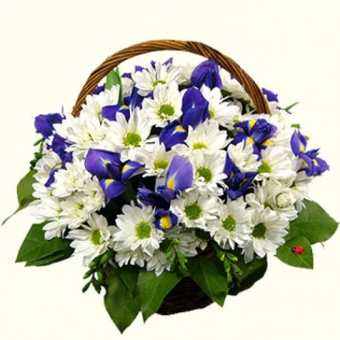 K20 FLOWERS BASKET WITH CHRYSANTHEMUMS AND IRISES