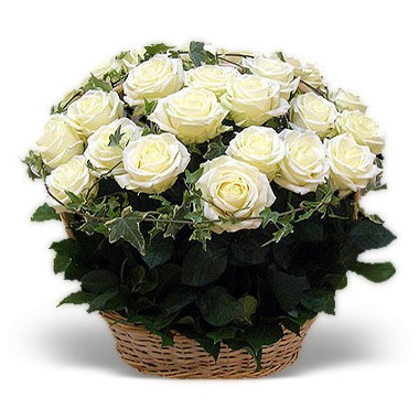 K7 FLOWER ARRANGEMENT WITH WITHE ROSES