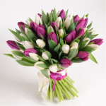 A124 MIX TULIPS