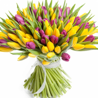 A125 MIX TULIPS