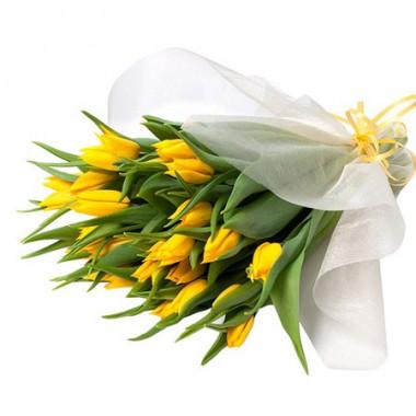 A123 25 тюльпанов