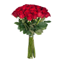 L12 Rose 90sm XXL